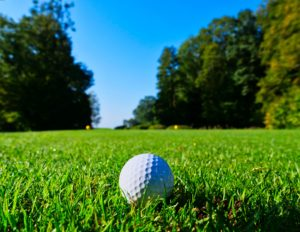 golf ball on a tee in the grass